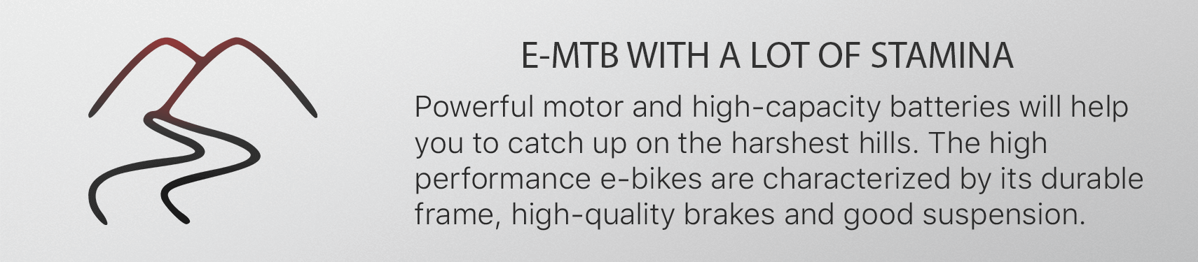 E-MTB WITH A LOT OF STAMINA. Powerful motor and high-capacity batteries will help  you to catch up on the harshest hills. The high  performance e-bikes are characterized by its durable  frame, high-quality brakes and good suspension.