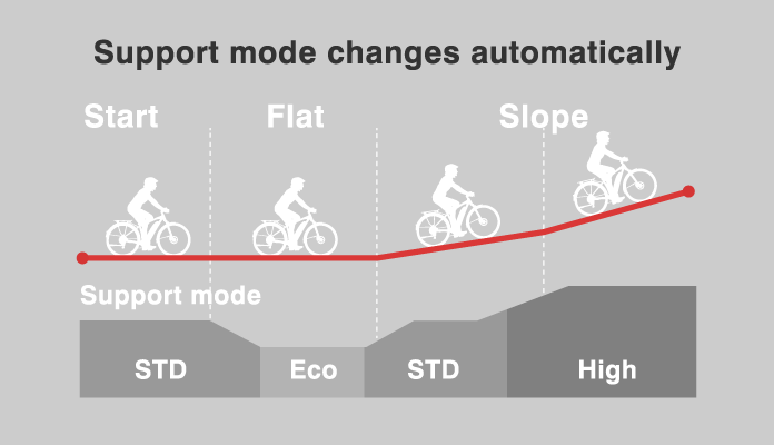 Automatic Support Mode for eMTB Ride