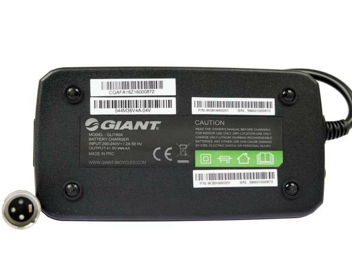 Charger GIANT EnergyPak 4 A