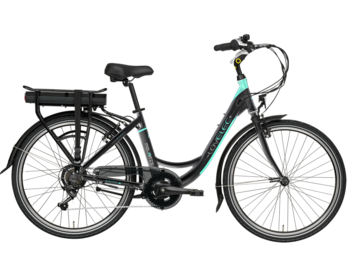 Economical city e-bike with rear charging.