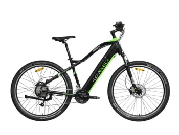 Robust mountain e-bike with rear motor.