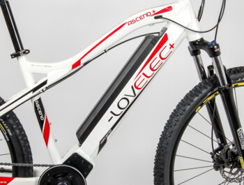 "Lovelec Ascend 29"" 2020 - moutain e-bike - rear drive Dapu"