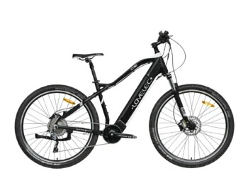 Elegant mountain e-bike with central drive and integrated battery.