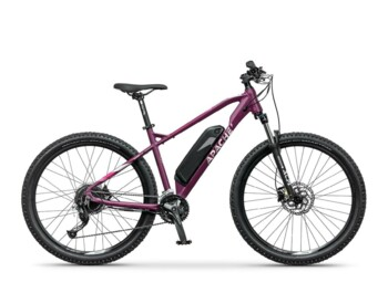 Mountain e-bike with Silent Plus 250W rear battery and a frame battery with a capacity of 470Wh.