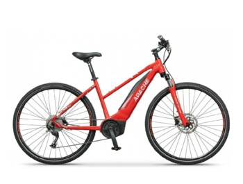 A cross e-bike with a Bosch Active motor with maximum torque of 48Nm and maximum power of 420W.