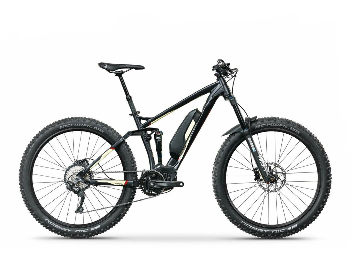 Full suspension ebike QAYRON Fatal eFS 3